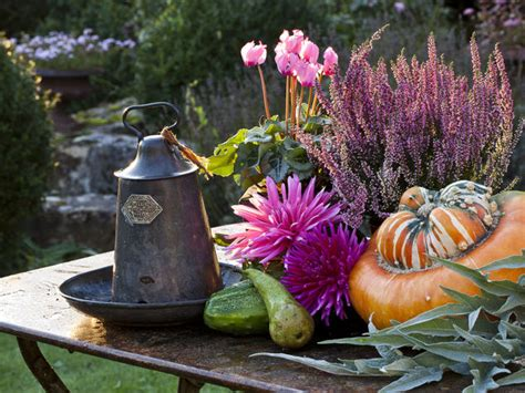 fiori inverno 10 piante per decorare il balcone d autunno donna moderna