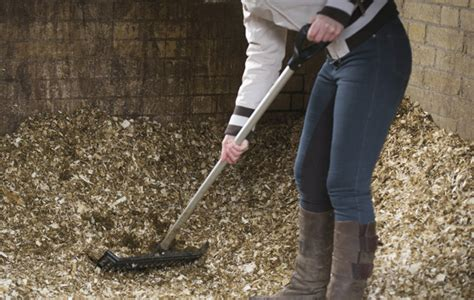 mucking stalls new year wish list for diy livery yard owners hound