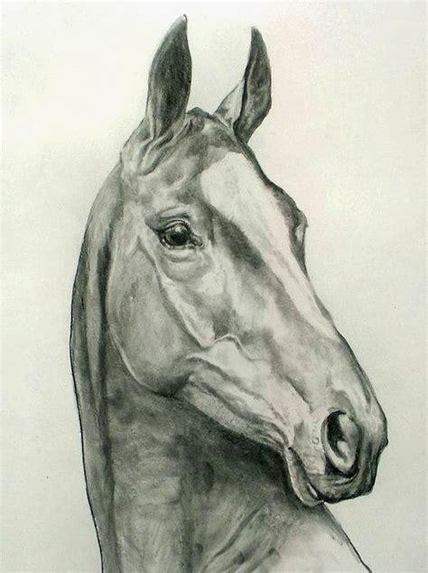 blanco y negro pintura lineal dibujar caballo ilustraci 243 n cuadros pinturas oleos dibujos de caballos pintura con
