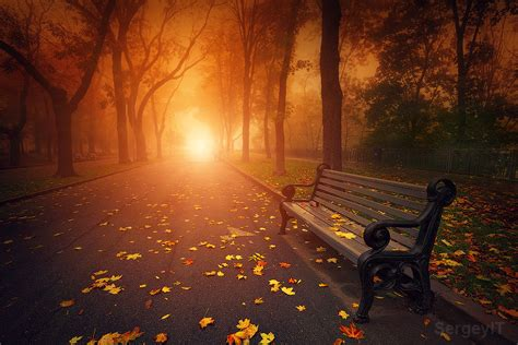 autumn park bench bench in foggy autumn park by sergiy trofimov 500px
