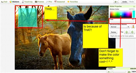layout html howrse how to make layouts the book of howrse