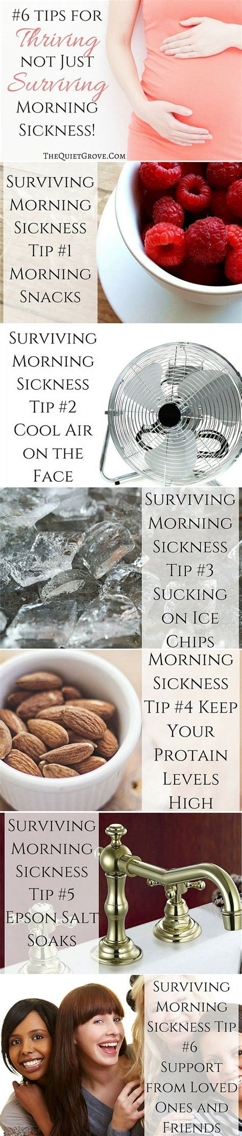 Best Thing For Nausea When You Are Detoxing From Heroine by 25 Best Ideas About Morning Sickness Remedies On