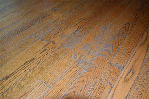 Repair Scratch Hardwood Floor Repairing Wood Floors Repair Wood Floor Gouge 100 Decorations Lumber Liquidators Orlando