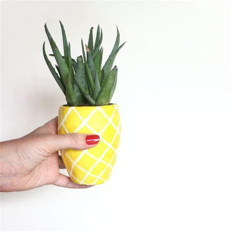 Pineapple Planter by Diy Succulent Pineapple Planter Lines Across