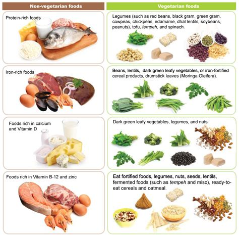 non vegetarian foods vegetarian diet and kids positive parenting