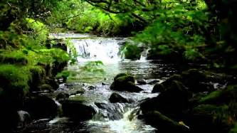 Relax nature sounds 8 hours waterfalls bird songs sleep relaxation