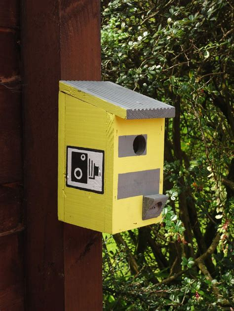 cool bird boxes bird cages