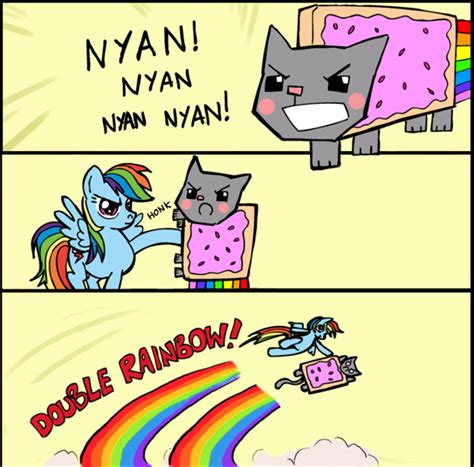 Rainbow Cat Meme - nyan cat with a pony nyan cat photo 25972218 fanpop