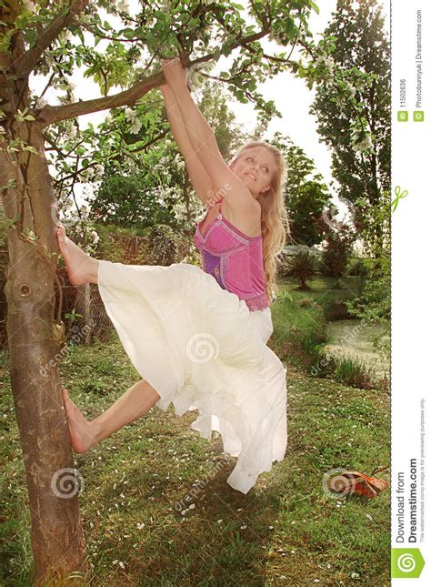 swinging from a tree young woman swinging from a tree royalty free stock image