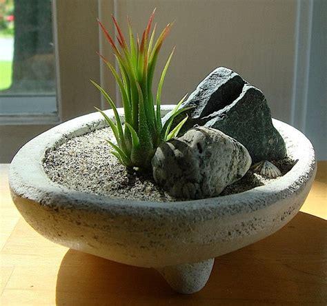 mini zen garten mini zen garden for the home zen gardens