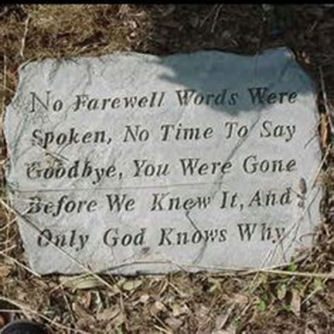 Happy Birthday And Rest In Peace Quotes 1000 Images About Rip Brother On Pinterest Rest In