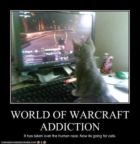 World Of Warcraft Meme - pin by tina bell on funny animals pinterest addiction