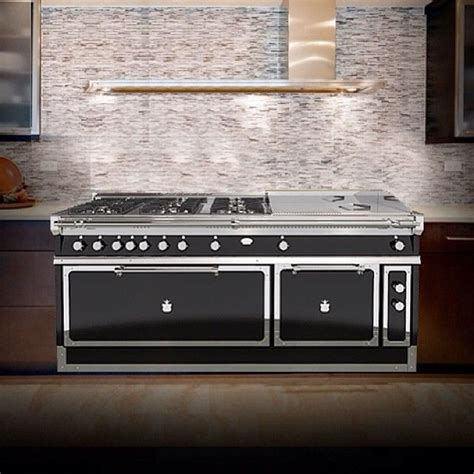 professional grade kitchen appliances double oven six professional grade gas burners and a