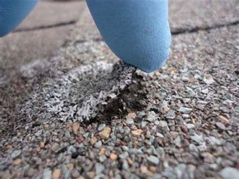 moss lichen black streaks  stains   roof michigan
