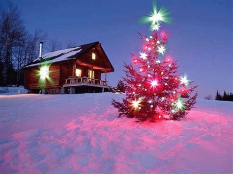 gif 193 rbol de navidad brillando sobre la nieve gif 2188