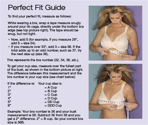 Playtex Announce Half Size Bras Finally by Bali Bra Measurement Guide Clothing