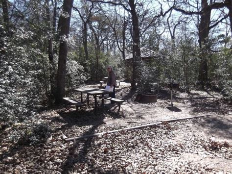 cing at oak thicket park fayetteville tx december