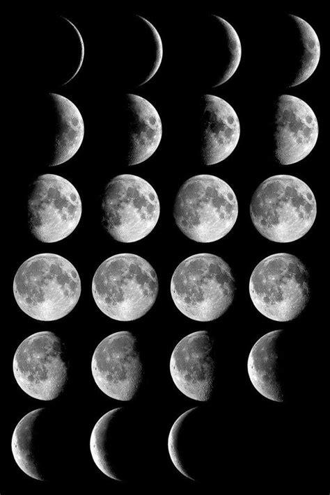 Jardiner avec la lune et maîtriser le calendrier lunaire