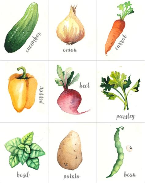 Printable Vegetable Garden Markers Pictures To Pin On Vegetable Garden Markers