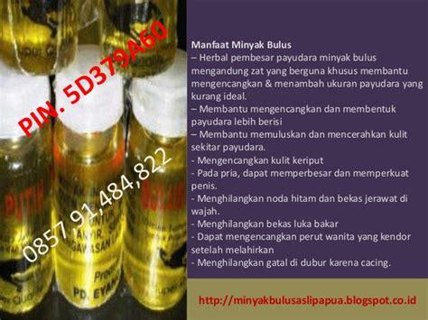 Jual Minyak Bulus Untuk Jerawat manfaat minyak bulus putih untuk jerawat manfaat dari