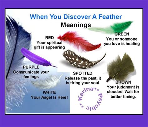 Meanings Of Feathers Brown White Green And Spotted Black Feather Meaning