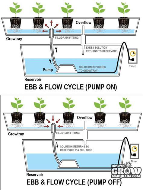 Aquaponics Vertical Garden - ebb flow hydroponics system