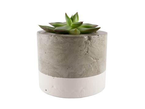 Felt Planters by White Concrete Planter Pot Felt