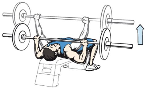 flat bench press barbell chest workout be your best protein shakes and creatine