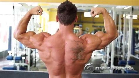 shawn dawson fitness model shawn dawson shoulders and arms workout youtube