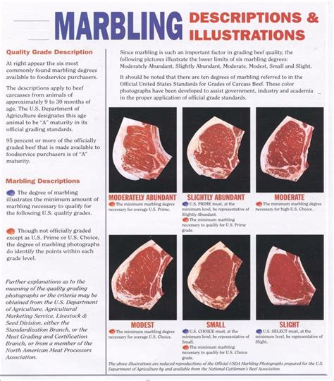 Which Cut Of Beef Has The Most Marbling - best 25 marbled ideas on texture design