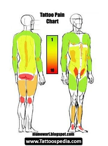 tattoo pain chart lower back 25 best ideas about tattoo pain chart on pinterest