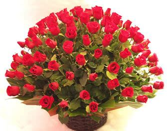 rosas para mi madre imagui flores florer 237 a flores peluches lima per 250