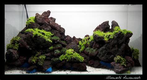 green reef optiwhite xx aquascaping world forum