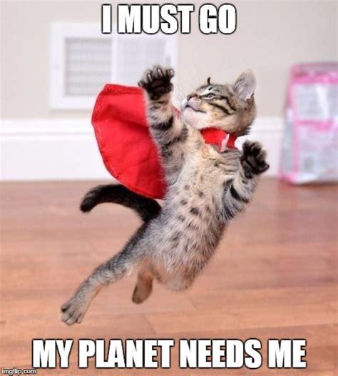 Cute Cat Meme Generator - my planet need me imgflip