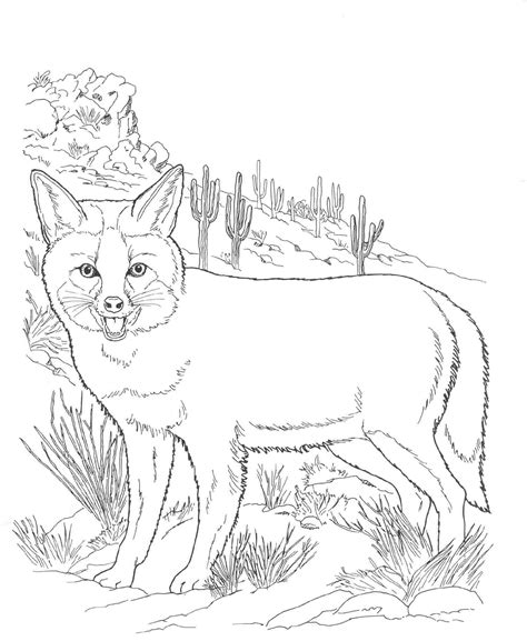 coloring pages wildlife animals free printable fox coloring pages for kids