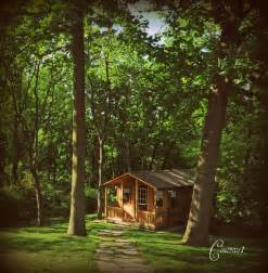 little house in the woods flickr photo sharing