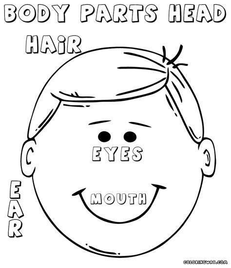 Body Parts Coloring Pages Coloring Pages To Download And Parts Coloring Pages