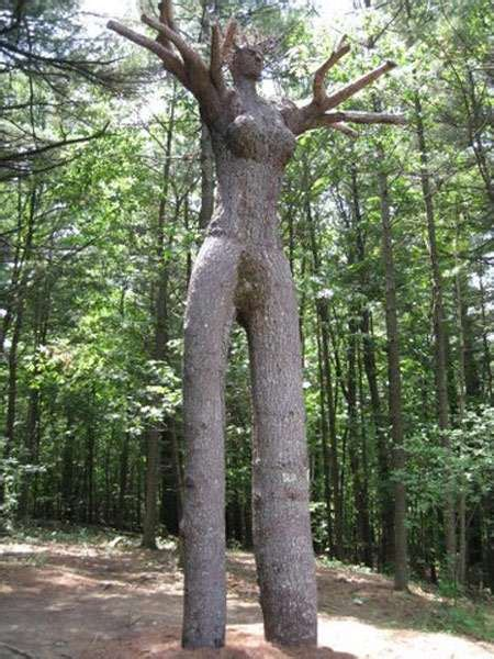 amazing tree amazing trees the amazing and cool tree sculptures by