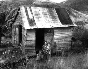 Puerto Rican Root Vegetables - usgs puerto rico historic photographs