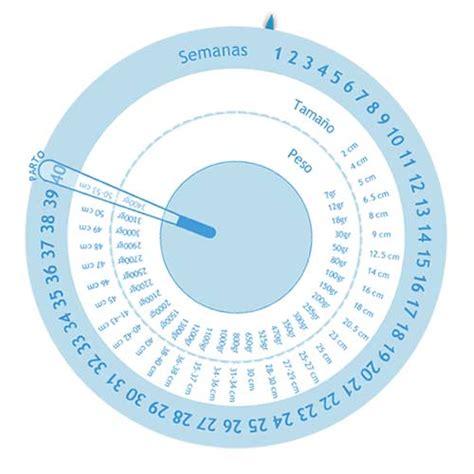 Calendario De Gestacion Calculadora De Embarazo