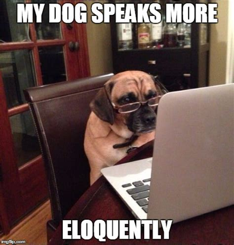Dog On Computer Meme - computer dog imgflip