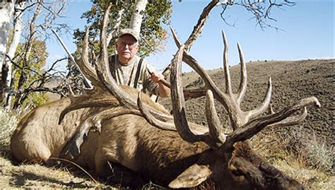 Records Utah Spider Bull Is New World Record Elk