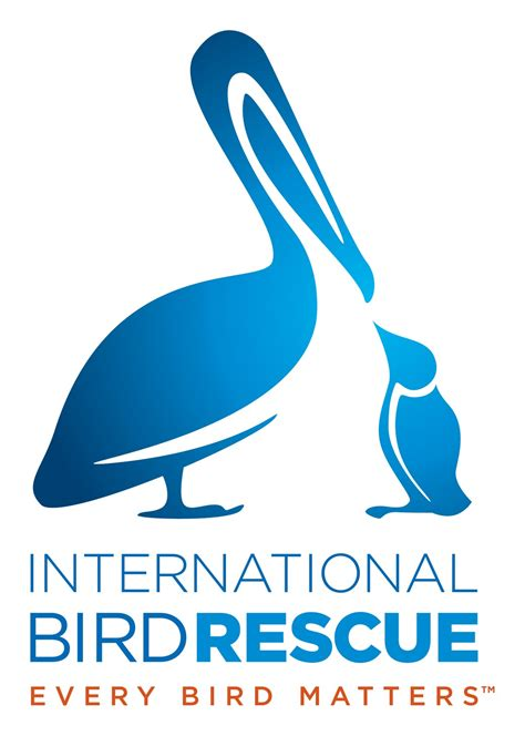 international bird rescue givv org monthly giving made
