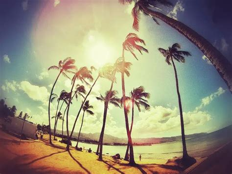 imagenes tumblr paradise photography vintage pictures imagenes wallpapers on we