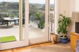 petsafe sliding glass pet door giveaway pawsitively pets