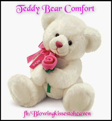 comfort teddy bear 44 best teddy bear comfort images on pinterest teddy
