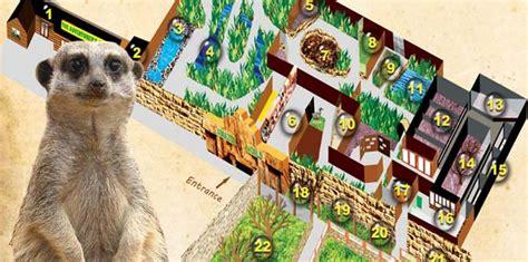amazon zoo 最全面的英国怀特岛isle of wight旅游攻略 英国羽西