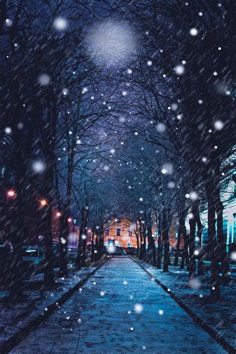 christmas lights that look like snow falling onetigris this photo looks like a painting snow falling from the sky the lights shine
