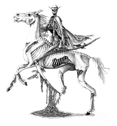 pale rider drawing by emma ridley