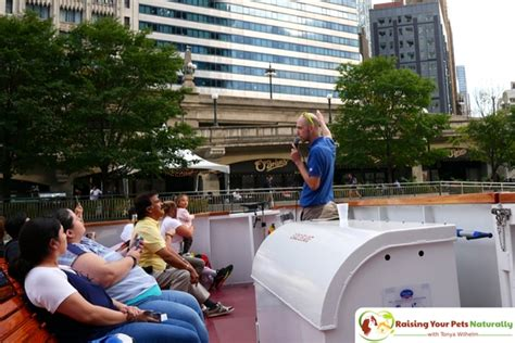 chicago boat tour with dog dog friendly chicago attractions dog friendly boat tours
